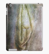 Naked Lady iPad Case/Skin