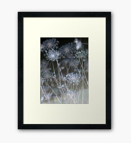 Seeing Stars Framed Print