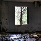 Tree Frame by Okeesworld