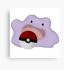 ditto Canvas Print
