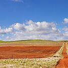 AU_Burra Road by kelliejane