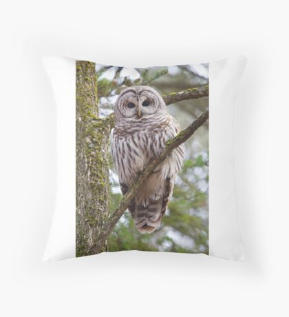 Who, Who, Who cooks for you? Barred Owl Throw Pillow