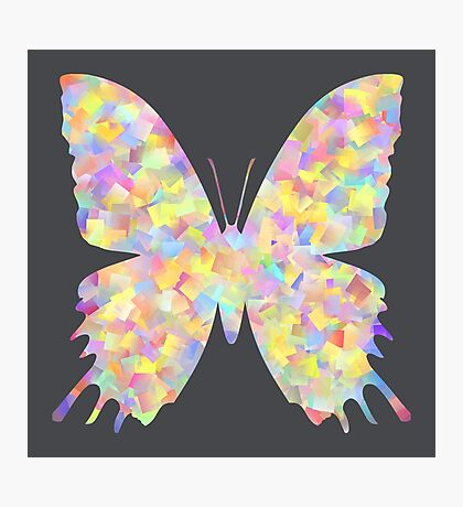 Pastel Motley Butterfly Photographic Print
