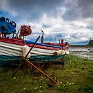 Holy Island by Robert  Taylor