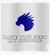 Have you seen Gern's broom? Poster