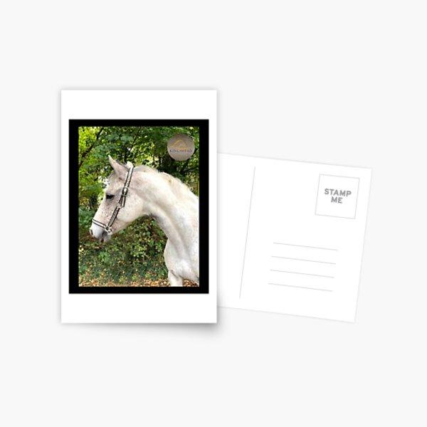 Rohan Collection Postcard