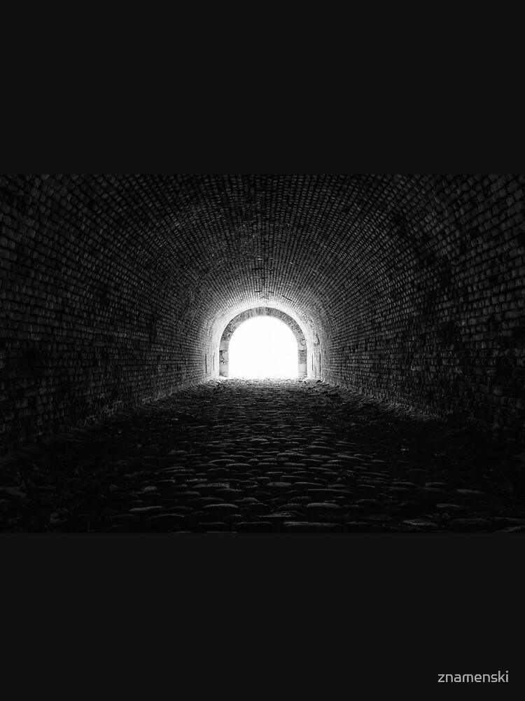 Tunnel by znamenski