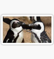 lovers penguins Sticker