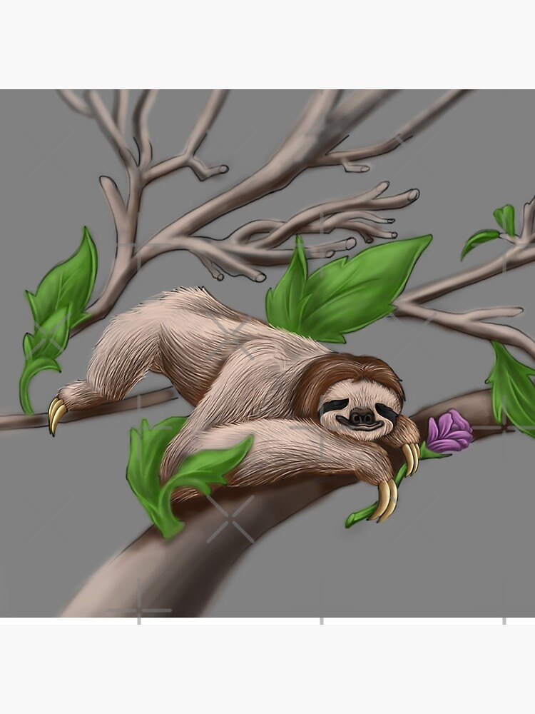 Just Chilin like a Sloth by snohock