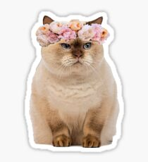 Grumpy Flower Cat Sticker