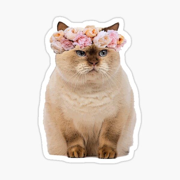 Grumpy Flower Cat Sticker