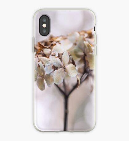 Pale Ardour iPhone Case