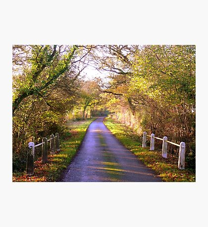 Take me Home, Country Road Photographic Print