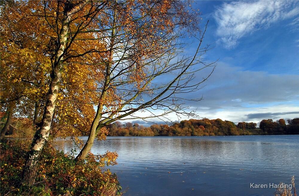 AUTUMN LAKE ENGLAND by Karen Harding
