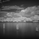 Amstel River in Infrared #5 by ColourBlind