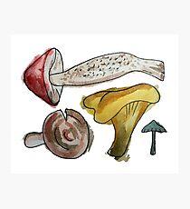 Mushroom Tetris Photographic Print