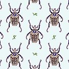 Goliath beetle by smalldrawing