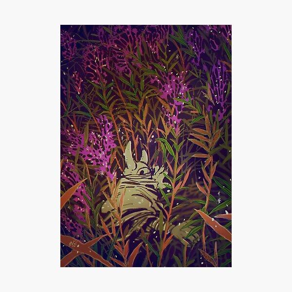 Pollen Photographic Print