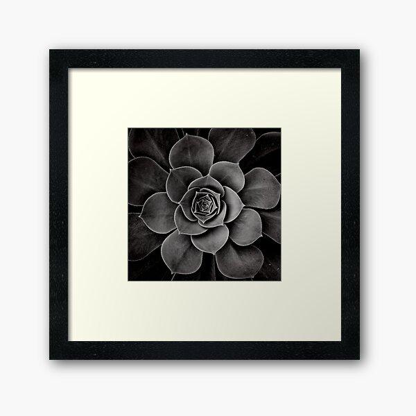 levels of plant Framed Art Print