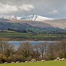 The Brecon Beacons by Stephen Liptrot