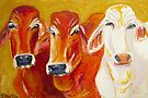 Outback Queens by TraceyMackieArt
