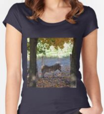 A Donkey's Tale Women's Fitted Scoop T-Shirt