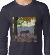 A Donkey's Tale Long Sleeve T-Shirt