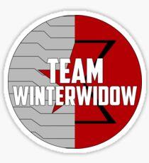 Team WinterWidow Sticker