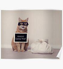 The Catnip Thief Poster