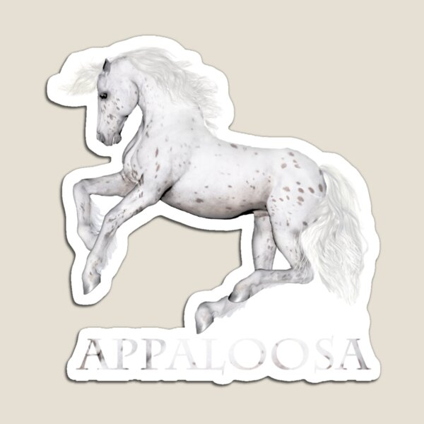 The Appaloosa  Magnet