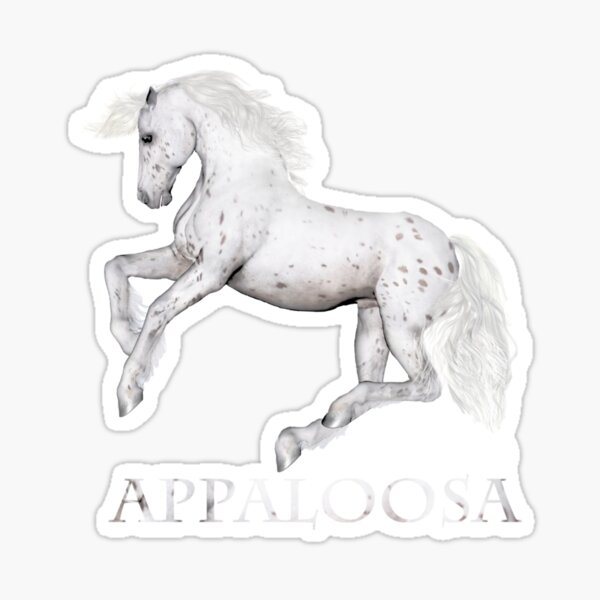 The Appaloosa  Sticker