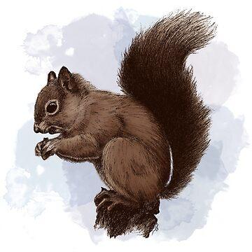 Eichhörnchen. von laurenwill27