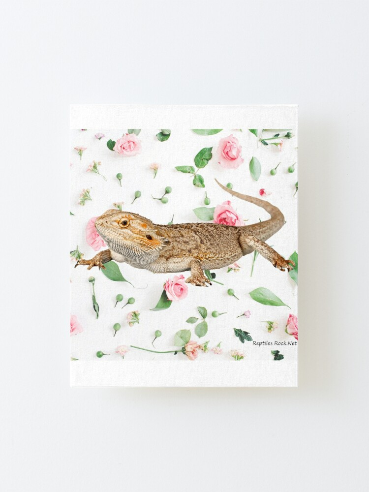 Alternate view of Bearded Dragon On A Carnation Background Mounted Print