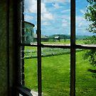 Farm Through Window by Susan Savad