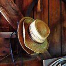 Farmer's Staw Hats by Susan Savad