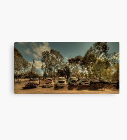 Past Their Use By Date Canvas Print