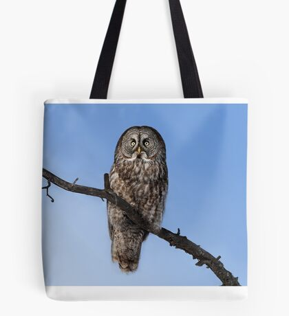 Great Grey owl sits in his perch Tote Bag