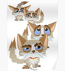 The Moods Of Grumpy Cat Poster