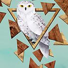 Owl in the Woods by littleclyde