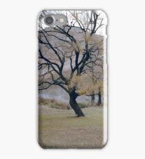 Golden Gate Tree iPhone Case/Skin