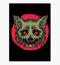 Evil Dirty Zombie Cat Photographic Print