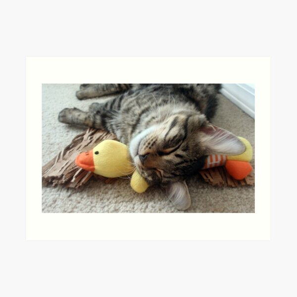 Mikino & Ducky, Naptime Art Print