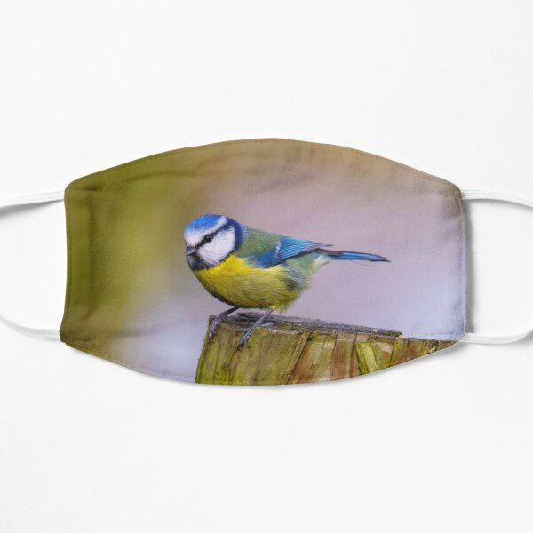 Blue Tit perched on a fence post Flat Mask