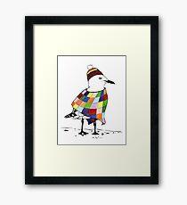 Chilli the Seagull Framed Print