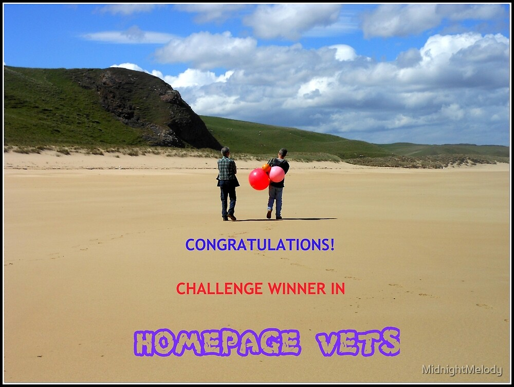 Challenge Winner Banner - Home Page Vets by MidnightMelody
