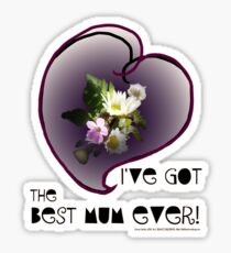 wildflower, Best Mum EVER! heart quirky Sticker