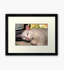 i'm comfortable wherever you are Framed Print