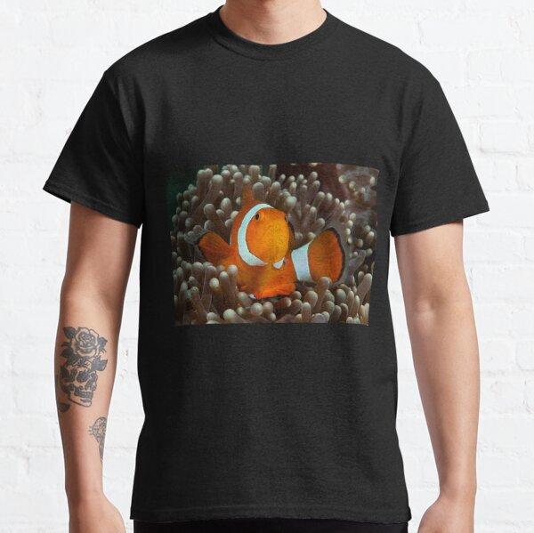 False Clown Anemonefish, Kapalai, Sabah, Malaysia Classic T-Shirt