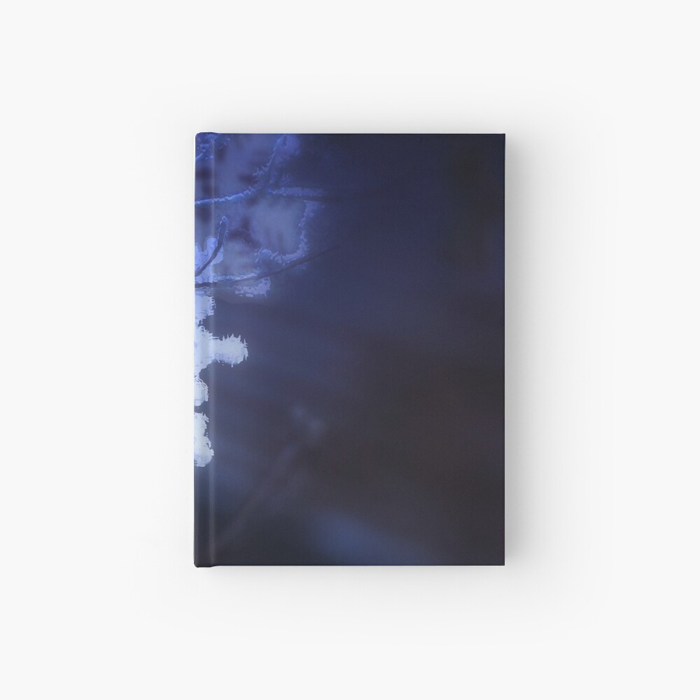 snowflakes in blue 3 Hardcover Journal