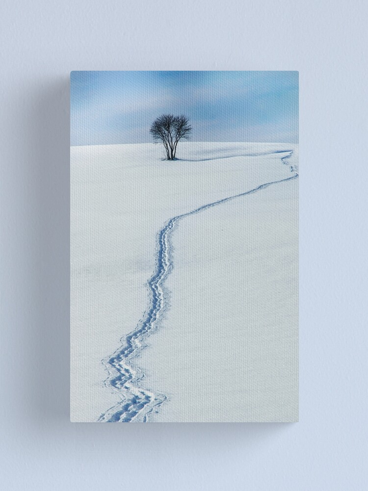 Alternate view of The Path to the Horizon Canvas Print